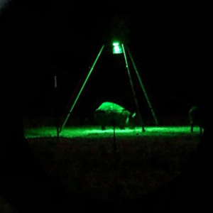 Kill Light® Motion Activated Feeder Light