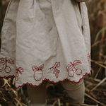 Baby Embroidery dress