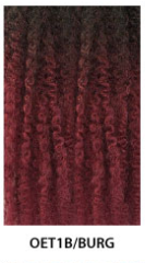 Janet Collection 4X EZ Senegalese Braid
