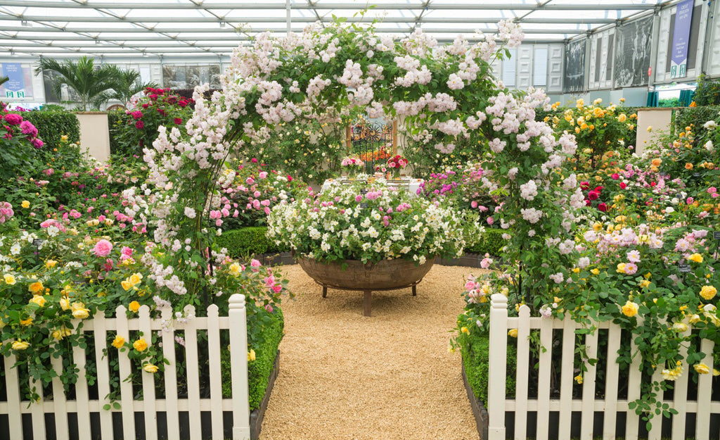 May 21st - 25th | Chelsea Flower Show