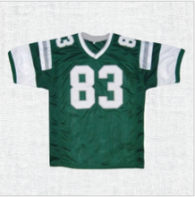 Load image into Gallery viewer, Vince Papale Invincible Movie Football Jersey