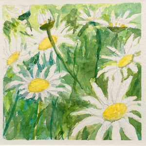 "Daisies for Days, original watercolor, 5""x5"""
