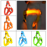 LED Light Up Harness