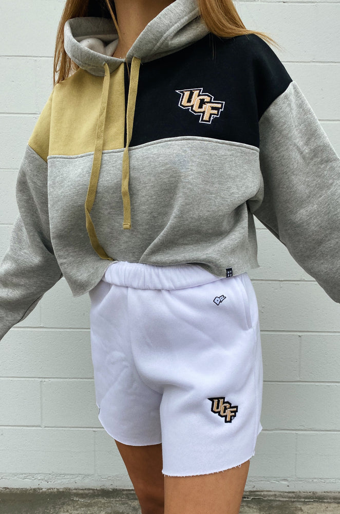 Load image into Gallery viewer, UCF Color-Block Hoodie