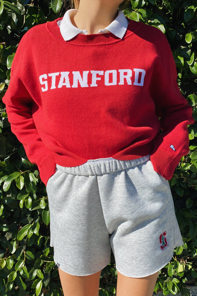 Load image into Gallery viewer, Stanford Ivy Intarsia Sweater