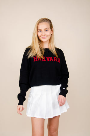 Load image into Gallery viewer, Harvard Ivy Intarsia Sweater