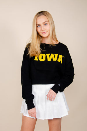 Load image into Gallery viewer, Iowa Ivy Intarsia Sweater