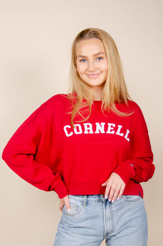 Load image into Gallery viewer, Cornell Ivy Intarsia Sweater