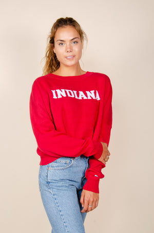 Load image into Gallery viewer, Indiana Ivy Intarsia Sweater
