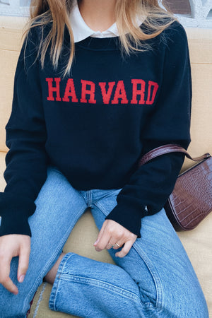 Load image into Gallery viewer, harvard vintage sweater