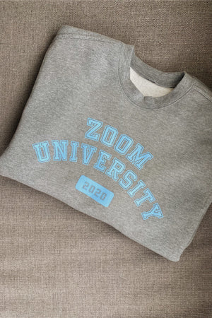 Load image into Gallery viewer, Zoom University Crewneck - Hype and Vice