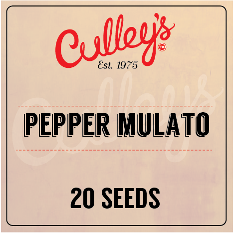 Culley's Pepper Mulato Seeds