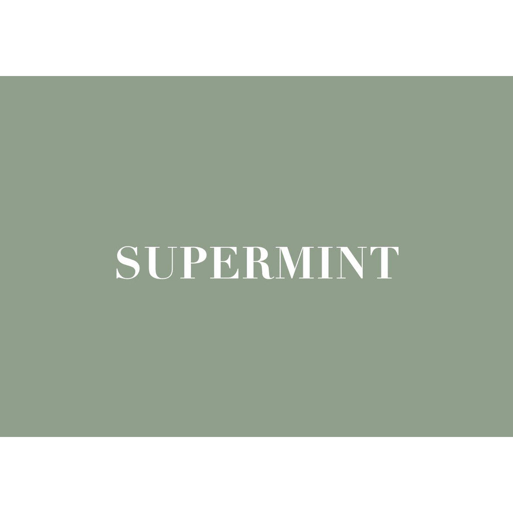 Introduction to SUPERMINT Sustainability