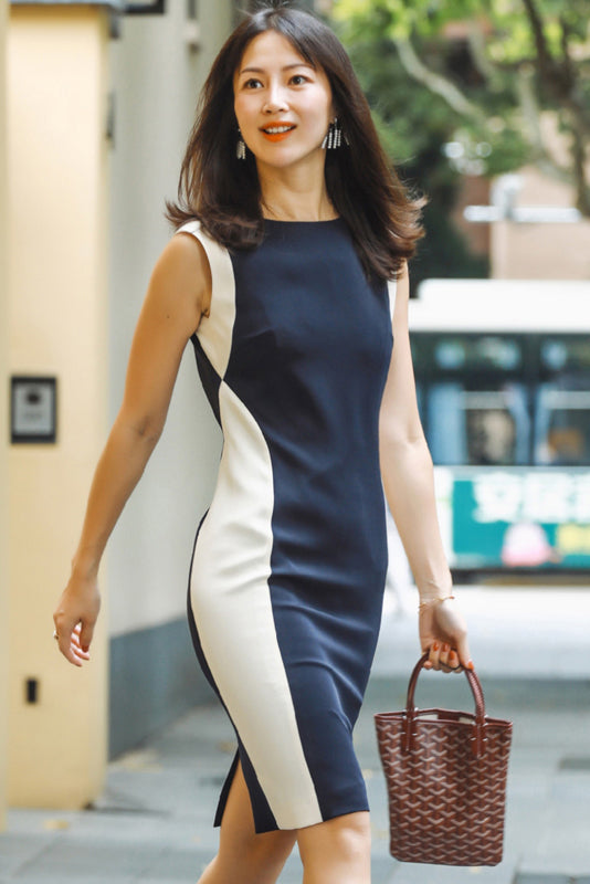 Navy Blue And White Slim One-Piece Dress