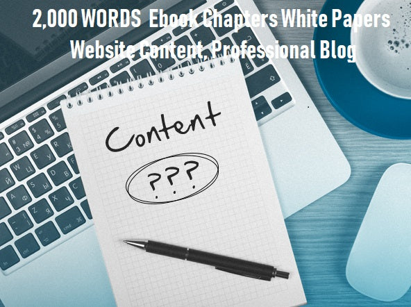 2,000 WORDS  Ebook Chapters White Papers Website Content, Professional Blog