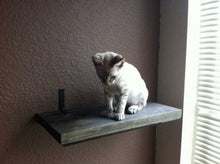 Load image into Gallery viewer, Solid Cat Shelf