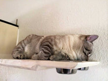 Load image into Gallery viewer, Cat Dining Shelf