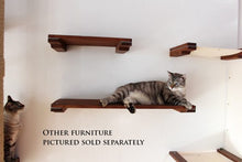 "Load image into Gallery viewer, Cat Mod 34"" Shelf"