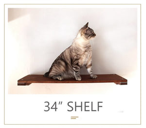 "Cat Mod 34"" Shelf"