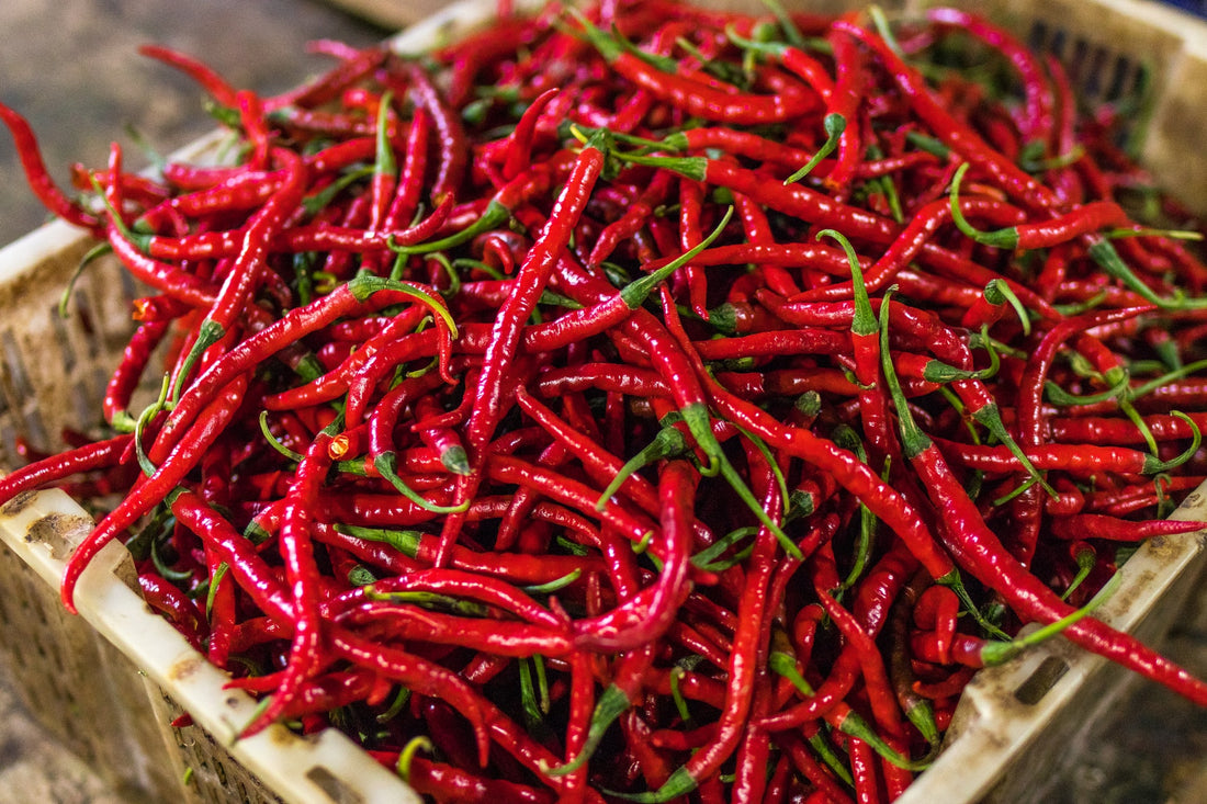 What is Capsaicin and What Does it Do?