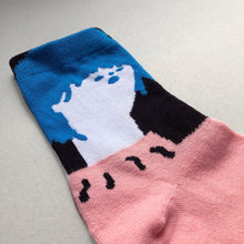 Load image into Gallery viewer, Pink & Blue Socks