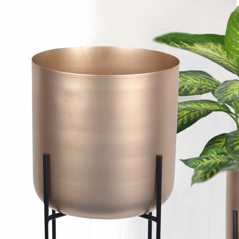 Minimalist Aurelia Indoor Planter