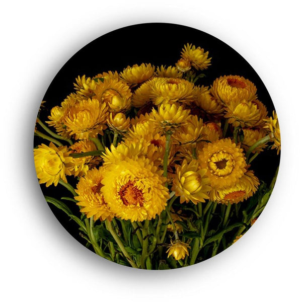 Yellow Mums of Fall Canvas - The Artment