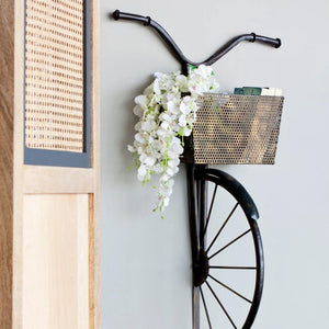Retro Cycle With Basket