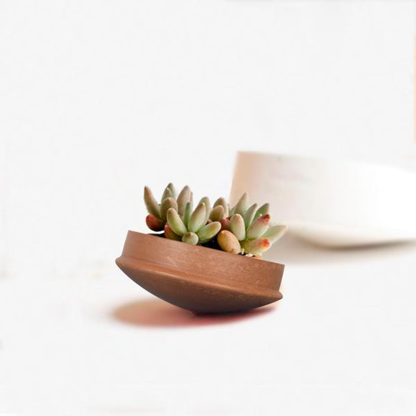 Rivaayat Terracotta Spin Planter - The Artment