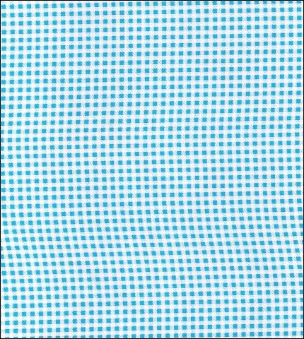 Gingham . Mini Light Blue Oilcloth Fabric