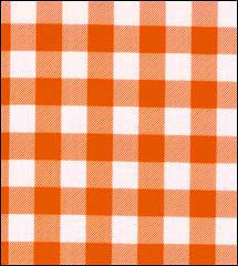 Gingham . Large Orange Oilcloth Fabric Roll