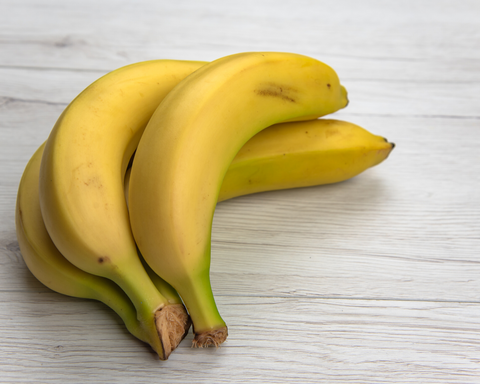The Benefits of Banana for Dogs