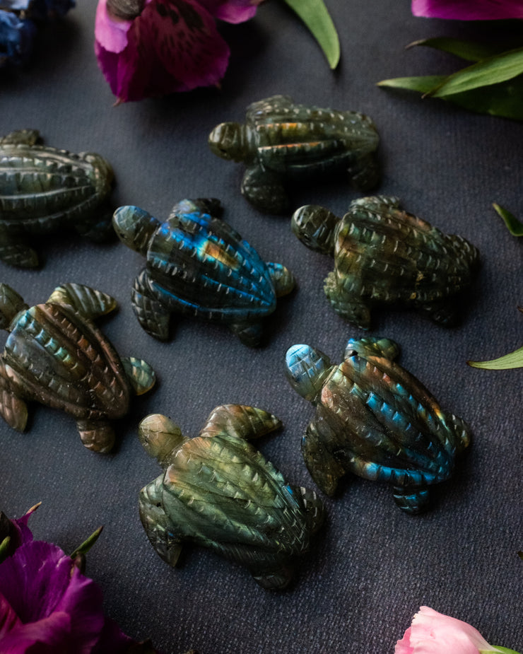 Labradorite Hand Carved Leatherback Sea Turtle Necklace