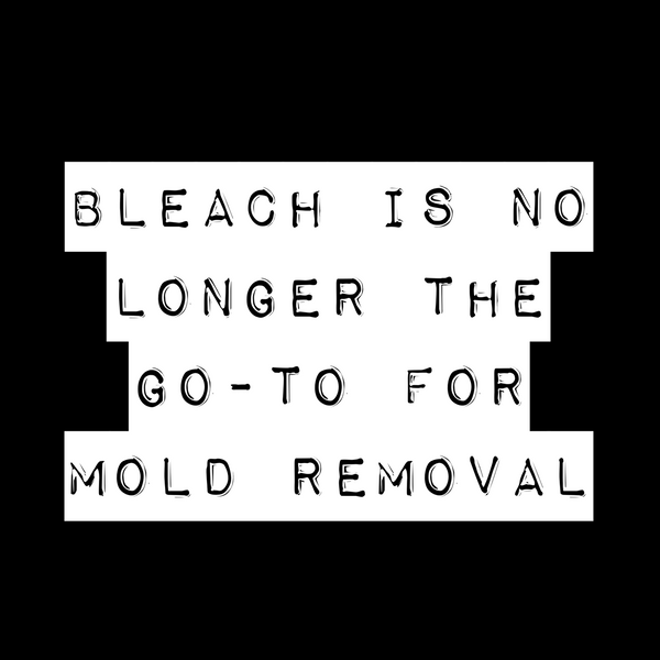 How You Should Clean Up Mold - Bleach Is Not the Best Option!