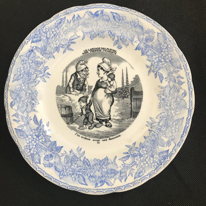 Blue and White Set of Five French Plates - Language of Flowers/Le Langage des Fleurs - Humorous!