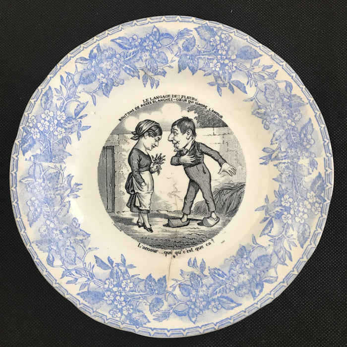 Set of Five French Plates - Language of Flowers/Le Langage des Fleurs - Gorgeous for sale