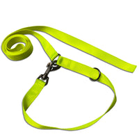 Teamsport Jogi Leash 1m