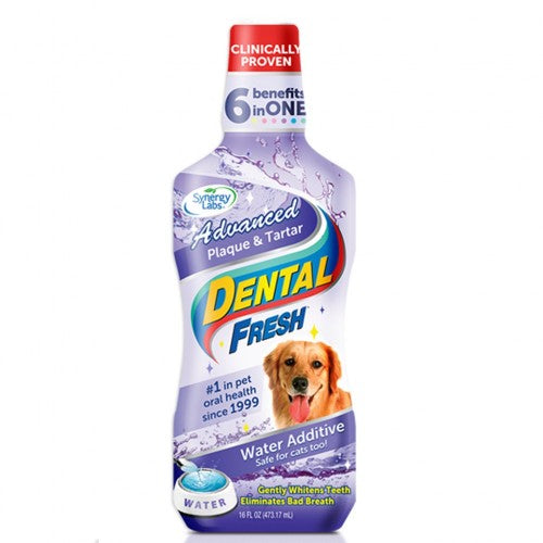 SYNERGY LAB DENTAL FRESH PLAQUE & TARTAR-DOG 503 ML