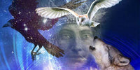 Cosmic Soul Retrieval To Heal Soul Loss, Scarcity & Survival Wounds MP3