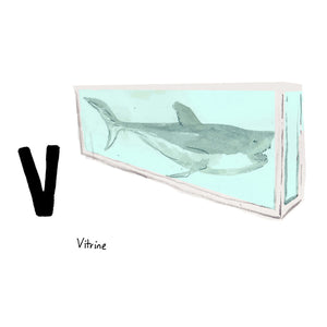V is for Vitrine. Damien Hirst was commissioned by British mogul and art collector, Charles Saatchi, to make any artwork for £50k. He made this vitrine, holding a fourteen foot long tiger shark preserved in formaldehyde, and titled it 'The Physical Impossibility of Death in the Mind of Someone Living.' It was later sold to art collector Steven Cohen for approximately $12m.