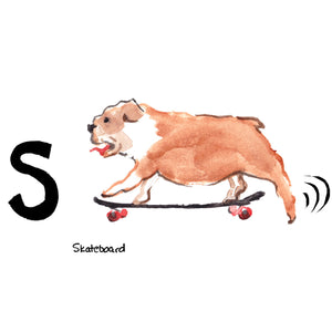 S is for Skateboard. The first skateboard was created in a Los Angeles surf shop. Shop owner, Bill Richard, partnered with the Chicago Roller Skate Company to produce skate wheels to be attached to the rectangular shaped, wooden skateboard decks.