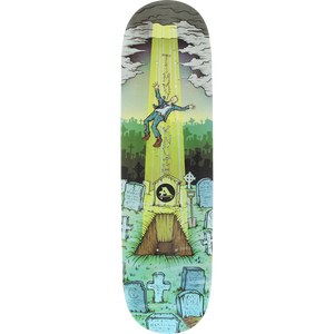 "All I Need Timmy Knuth ""Resurrection"" Skateboard Deck 8.1"" w/Free Griptape"
