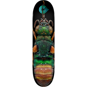 "Powell Peralta ""Ruby Tailed Wasp"" Skateboard Deck 8.5"" w/Free MOB Griptape"