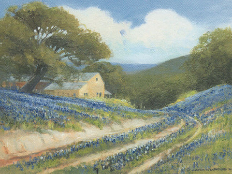 Bluebonnets and dirt road - Stone house
