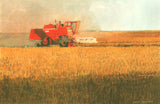 Harvesting Wheat | I-59