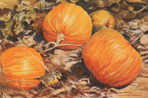 TQ - 2  Pumpkins and Meadowlark