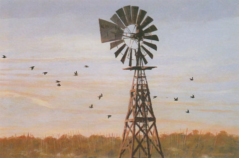 TQ - 26 South Texas Windmill