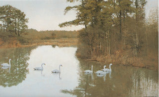 H-56  Swans-River