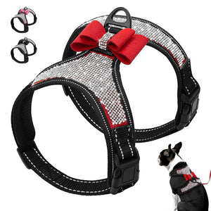 Rhinestone Harness Soft Mesh Reflective