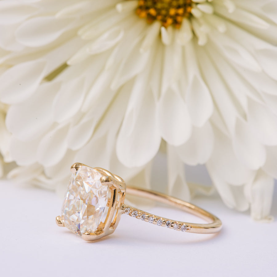 Journee in Diamonds | Elongated Cushion Cut Moissanite with Pave Diamond Band